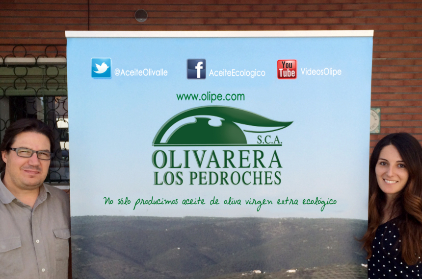 Revista Pozoblanco Saludable Nº36 2014 Olivarera Los Pedroches Olivar de Sierra Aceite Ecológico Olipe Olivalle